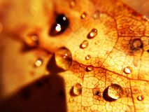 ύδωρ σταγονίδιων στοκ φωτογραφίες