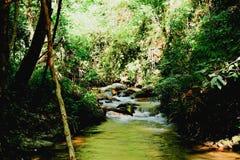 ύδωρ της Ταϊλάνδης φύσης ροής Στοκ εικόνα με δικαίωμα ελεύθερης χρήσης