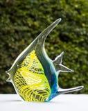 ύδωρ ψαριών έξω Στοκ Φωτογραφίες