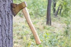 Ώθηση τσεκουριών στον κορμό Στοκ εικόνα με δικαίωμα ελεύθερης χρήσης