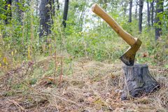 Ώθηση τσεκουριών στο κολόβωμα Στοκ φωτογραφία με δικαίωμα ελεύθερης χρήσης