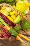 ώριμα λαχανικά Στοκ Εικόνα