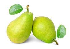 Ώριμα αχλάδια Στοκ Εικόνες