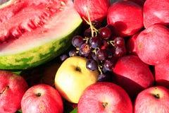 Ώριμα καρπούζι και σταφύλι μήλων φρούτων Στοκ φωτογραφίες με δικαίωμα ελεύθερης χρήσης