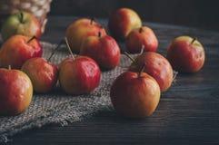 Ώριμα κόκκινα μήλα σε μια παλαιά ξύλινη πετσέτα πινάκων και λινού Στοκ εικόνα με δικαίωμα ελεύθερης χρήσης