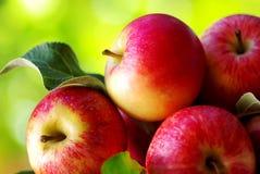 Ώριμα κόκκινα μήλα στον πίνακα Στοκ εικόνες με δικαίωμα ελεύθερης χρήσης