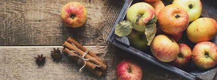 Ώριμα μήλα με την κανέλα στο ξύλινο υπόβαθρο απαγορευμένα στοκ εικόνες