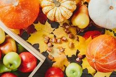 Ώριμα μήλα σε ένα κιβώτιο με τις κολοκύθες, τα αχλάδια, τα φουντούκια και τα ζωηρόχρωμα φύλλα σφενδάμου στο σκοτεινό ξύλινο υπόβα στοκ εικόνες