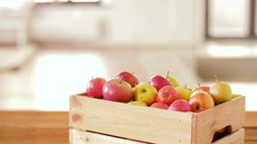 Ώριμα μήλα στο ξύλινο κιβώτιο στον πίνακα απόθεμα βίντεο