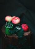 Ώριμα μήλα και ξηρά μέντα Στοκ φωτογραφία με δικαίωμα ελεύθερης χρήσης