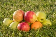 Ώριμα μήλα και πορτοκάλι στη χλόη Στοκ εικόνα με δικαίωμα ελεύθερης χρήσης