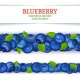 Ώριμα οριζόντια άνευ ραφής σύνορα φρούτων βακκινίων Διανυσματική ευρεία και στενή ατελείωτη λουρίδα καρτών απεικόνισης με το μύρτ διανυσματική απεικόνιση
