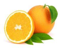 Ώριμα πορτοκάλια με τα φύλλα. Στοκ Εικόνες