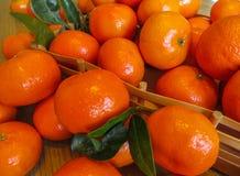 Ώριμα πορτοκαλιά μανταρίνια σε έναν ξύλινο δίσκο στον πίνακα στοκ εικόνα με δικαίωμα ελεύθερης χρήσης
