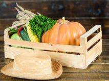 Ώριμα τοπικά αγροτικά λαχανικά Φρέσκο οργανικό υγιές κιβώτιο κήπων λαχανικών Έννοια συγκομιδών πτώσης Συγκομιδές συγκομιδών φθινο στοκ εικόνα