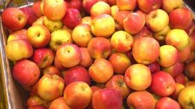 Ώριμα φρέσκα πράσινα μήλα στην πώληση στην αγορά shelfs φιλμ μικρού μήκους