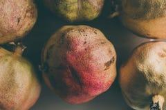 Ώριμα φρούτα ροδιών ως υπόβαθρο Κλείστε επάνω την άποψη του υποβάθρου ροδιών Νωποί καρποί Ομάδα εκλεκτής ποιότητας ροδιών Στοκ φωτογραφίες με δικαίωμα ελεύθερης χρήσης