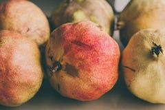 Ώριμα φρούτα ροδιών ως υπόβαθρο Κλείστε επάνω την άποψη του υποβάθρου ροδιών Νωποί καρποί Ομάδα εκλεκτής ποιότητας ροδιών Στοκ φωτογραφία με δικαίωμα ελεύθερης χρήσης