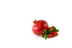 Ώριμα φρούτα ροδιών και ανθίζοντας κλάδος του δέντρου ροδιών που απομονώνεται στο άσπρο υπόβαθρο Στοκ Φωτογραφία