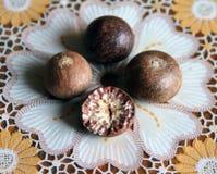 Ώριμα φρούτα του betel δέντρου Στοκ Φωτογραφία