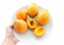 Ώριμα φρούτα canistel που απομονώνονται στοκ εικόνα