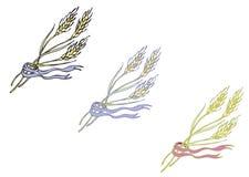 Ώριμα spikelets δημητριακά Στοκ φωτογραφία με δικαίωμα ελεύθερης χρήσης