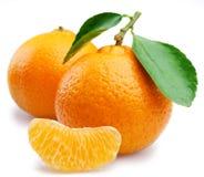 ώριμα tangerines φετών φύλλων Στοκ φωτογραφία με δικαίωμα ελεύθερης χρήσης