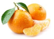 ώριμα tangerines φύλλων Στοκ Φωτογραφία