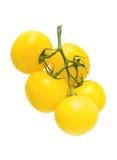 Ώριμες κίτρινες ντομάτες που απομονώνονται στο άσπρο υπόβαθρο Στοκ φωτογραφία με δικαίωμα ελεύθερης χρήσης