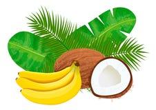 Ώριμες και μπανάνες και καρύδες χυμού με τα φύλλα φοινικών Στοκ εικόνα με δικαίωμα ελεύθερης χρήσης