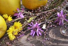 Ώριμες κυδώνια και δέσμη των άγριων λουλουδιών στον τραχύ ξύλινο πίνακα Ρομαντικό θέμα με το φυσικό ντεκόρ Στοκ φωτογραφία με δικαίωμα ελεύθερης χρήσης