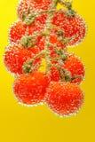 Ώριμες κόκκινες ντομάτες κερασιών στοκ φωτογραφία με δικαίωμα ελεύθερης χρήσης