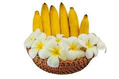 Ώριμες μπανάνες σε έναν δίσκο μπαμπού στοκ φωτογραφία