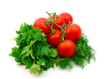 ώριμες ντομάτες μαϊντανού Στοκ εικόνες με δικαίωμα ελεύθερης χρήσης