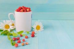 Ώριμες φράουλες με τα φύλλα φυτών στο μπλε ξύλινο υπόβαθρο, φράουλες στην άσπρη παλαιά κούπα, υγιής έννοια τροφίμων στοκ φωτογραφίες