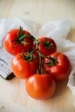 Ώριμες φυσικές ντομάτες που αυξάνονται σε έναν κλάδο σε ένα θερμοκήπιο πεδίο βάθους ρηχό Στοκ εικόνα με δικαίωμα ελεύθερης χρήσης