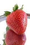 ώριμη ενιαία φράουλα αντανά Στοκ Φωτογραφίες
