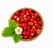 Ώριμη και νόστιμη φράουλα που απομονώνεται στο άσπρο υπόβαθρο Στοκ Εικόνες
