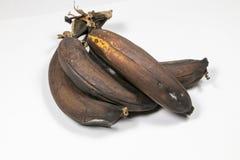 Ώριμη καφετιά μπανάνα Στοκ εικόνες με δικαίωμα ελεύθερης χρήσης