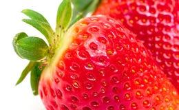 Ώριμη κόκκινη φράουλα μούρων Στοκ φωτογραφία με δικαίωμα ελεύθερης χρήσης