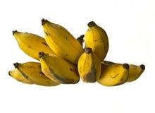 Ώριμη μπανάνα Στοκ εικόνες με δικαίωμα ελεύθερης χρήσης