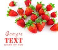 ώριμη φράουλα ομάδας Στοκ φωτογραφία με δικαίωμα ελεύθερης χρήσης