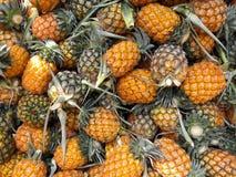 Ώριμοι ανανάδες στην αγορά και το υπόβαθρο Στοκ Εικόνες
