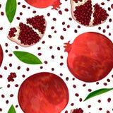 Ώριμοι κόκκινοι ρόδι, σπόροι και φέτες που απομονώνονται στο λευκό άνευ ραφής διάνυσμα προτύπ&omeg Στοκ Εικόνες