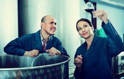 Ώριμοι συνάδελφοι ανδρών και γυναικών που εξετάζουν το κρασί στο γυαλί Στοκ εικόνα με δικαίωμα ελεύθερης χρήσης