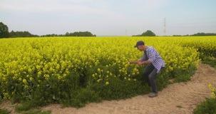 Ώριμος αρσενικός αγρότης που γράφει στην περιοχή αποκομμάτων στο αγρόκτημα Σύγχρονη γεωργία φιλμ μικρού μήκους