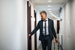 Ώριμος επιχειρηματίας με τις αποσκευές σε έναν διάδρομο ξενοδοχείων Στοκ εικόνες με δικαίωμα ελεύθερης χρήσης