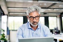 Ώριμος επιχειρηματίας με το lap-top στο γραφείο Στοκ Φωτογραφία