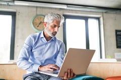 Ώριμος επιχειρηματίας με το lap-top στο δημιουργικό γραφείο Στοκ Εικόνες