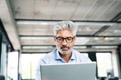 Ώριμος επιχειρηματίας με το lap-top στο δημιουργικό γραφείο Στοκ φωτογραφία με δικαίωμα ελεύθερης χρήσης